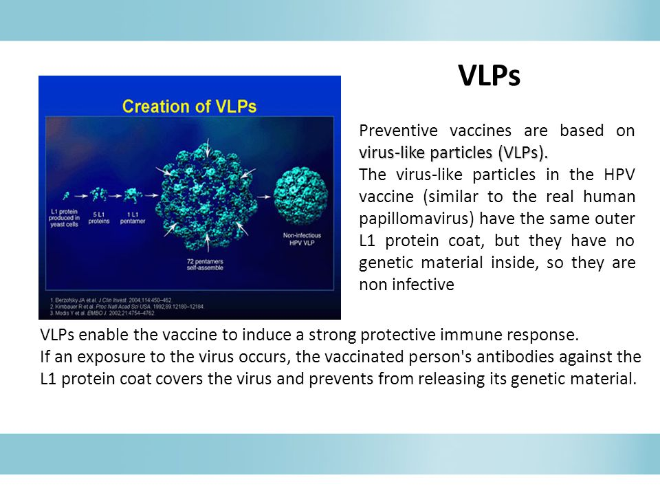 VLPs enable the vaccine to induce a strong protective immune response.