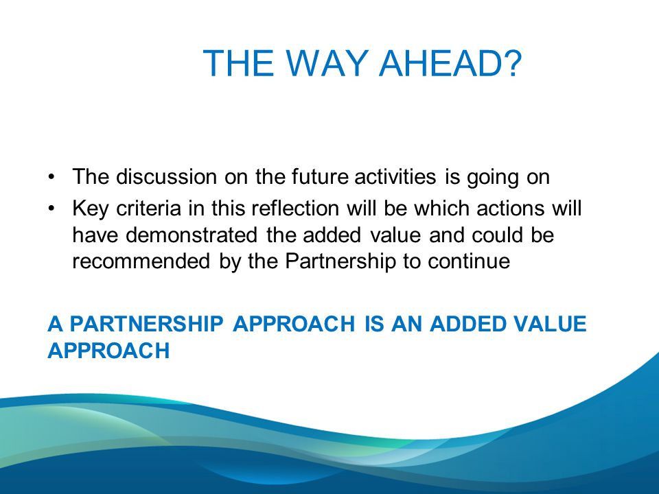 THE WAY AHEAD? The discussion on the future activities is going on Key criteria in this reflection will be which actions will have demonstrated the ad