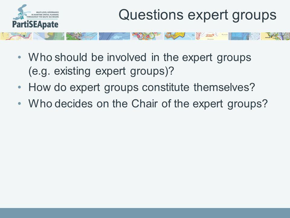 Questions expert groups Who should be involved in the expert groups (e.g.