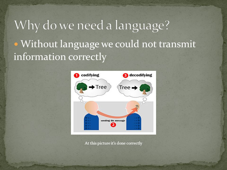 Without language we could not transmit information correctly At this picture it's done correctly