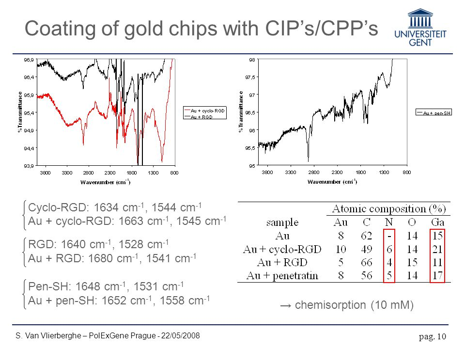 Coating of gold chips with CIP's/CPP's S. Van Vlierberghe – PolExGene Prague - 22/05/2008 pag. 10 Cyclo-RGD: 1634 cm -1, 1544 cm -1 Au + cyclo-RGD: 16