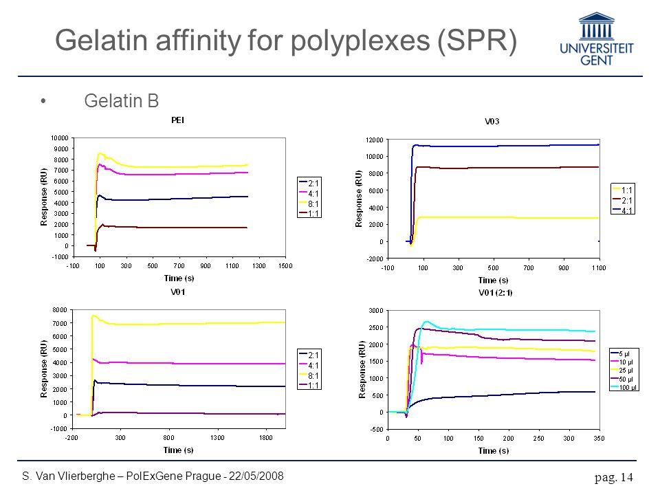 Gelatin affinity for polyplexes (SPR) S. Van Vlierberghe – PolExGene Prague - 22/05/2008 pag.