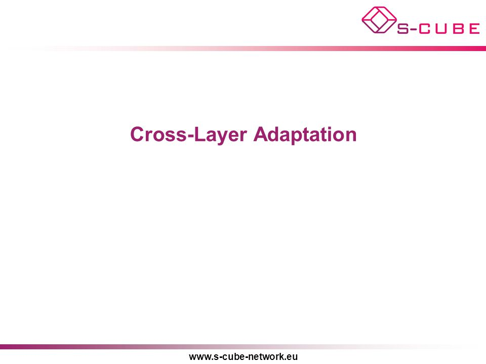 www.s-cube-network.eu Cross-Layer Adaptation