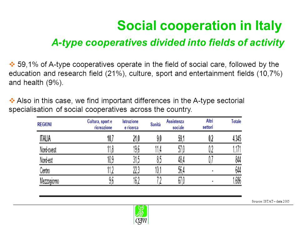 Social cooperation in Italy Source: ISTAT – data 2005 A-type cooperatives divided into fields of activity  59,1% of A-type cooperatives operate in the field of social care, followed by the education and research field (21%), culture, sport and entertainment fields (10,7%) and health (9%).