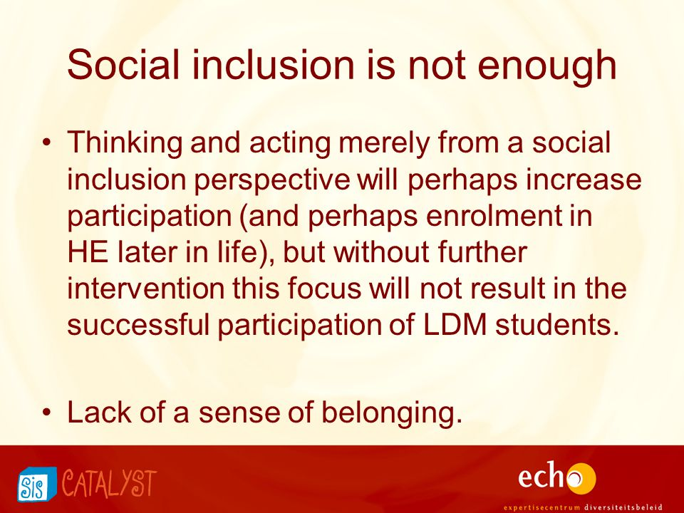 Social inclusion is not enough Thinking and acting merely from a social inclusion perspective will perhaps increase participation (and perhaps enrolment in HE later in life), but without further intervention this focus will not result in the successful participation of LDM students.