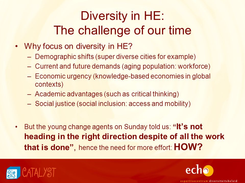 Diversity in HE: The challenge of our time Why focus on diversity in HE? –Demographic shifts (super diverse cities for example) –Current and future de