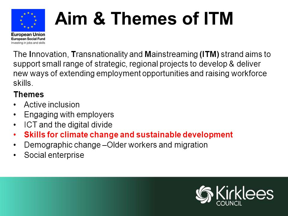 Aim & Themes of ITM The Innovation, Transnationality and Mainstreaming (ITM) strand aims to support small range of strategic, regional projects to develop & deliver new ways of extending employment opportunities and raising workforce skills.