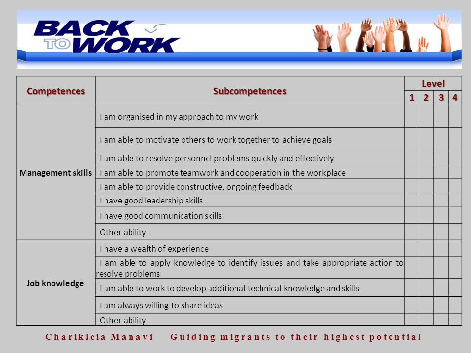 CompetencesSubcompetencesLevel1234 Management skills I am organised in my approach to my work I am able to motivate others to work together to achieve
