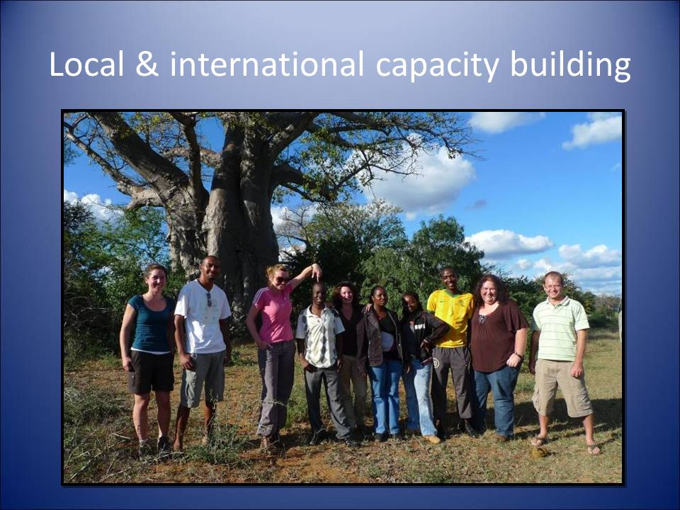 Local & international capacity building