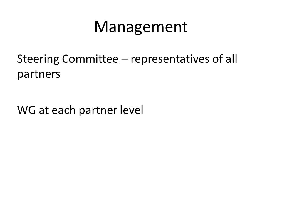 Management Steering Committee – representatives of all partners WG at each partner level