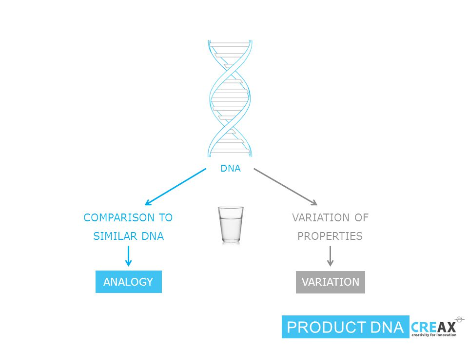 DNA COMPARISON TO SIMILAR DNA VARIATION OF PROPERTIES ANALOGY VARIATION PRODUCT DNA