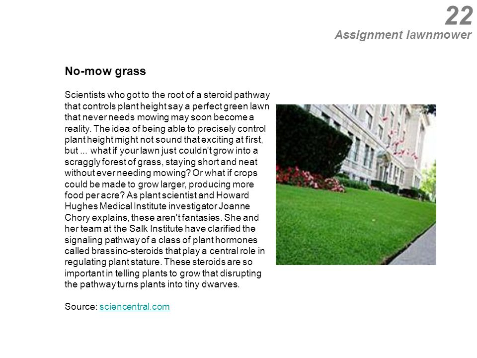 22 No-mow grass Scientists who got to the root of a steroid pathway that controls plant height say a perfect green lawn that never needs mowing may soon become a reality.