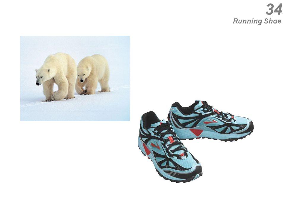 34 Running Shoe