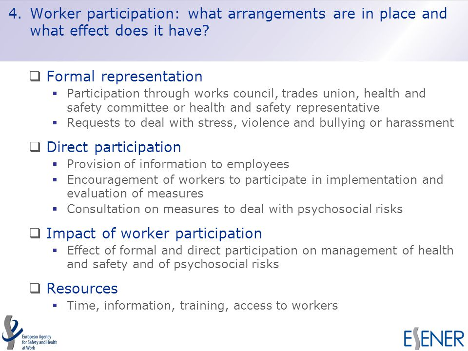 4.Worker participation: what arrangements are in place and what effect does it have.