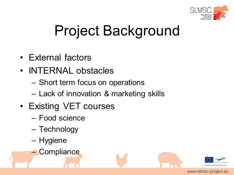 Project Background External factors INTERNAL obstacles –Short term focus on operations –Lack of innovation & marketing skills Existing VET courses –Food science –Technology –Hygiene –Compliance