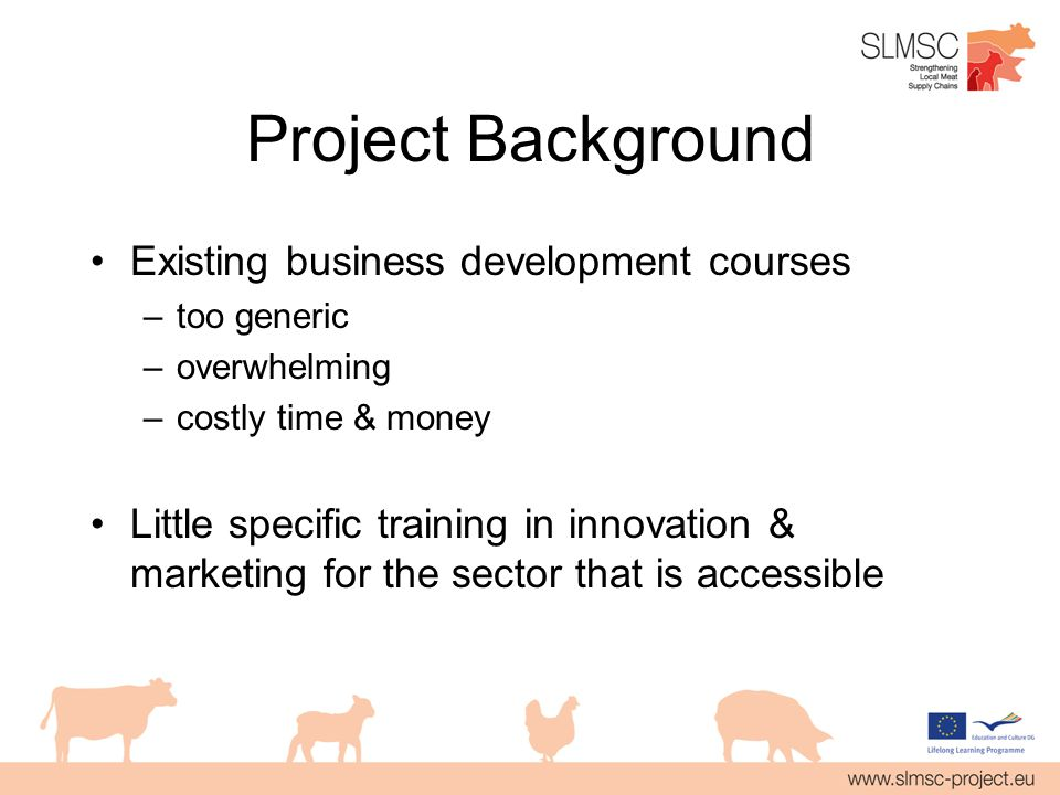 Project Background Existing business development courses –too generic –overwhelming –costly time & money Little specific training in innovation & marketing for the sector that is accessible