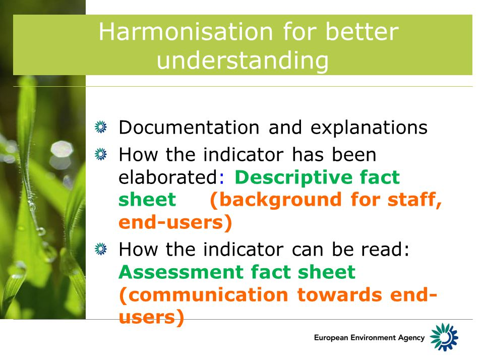 Documentation and explanations How the indicator has been elaborated: Descriptive fact sheet (background for staff, end-users) How the indicator can be read: Assessment fact sheet (communication towards end- users) Harmonisation for better understanding