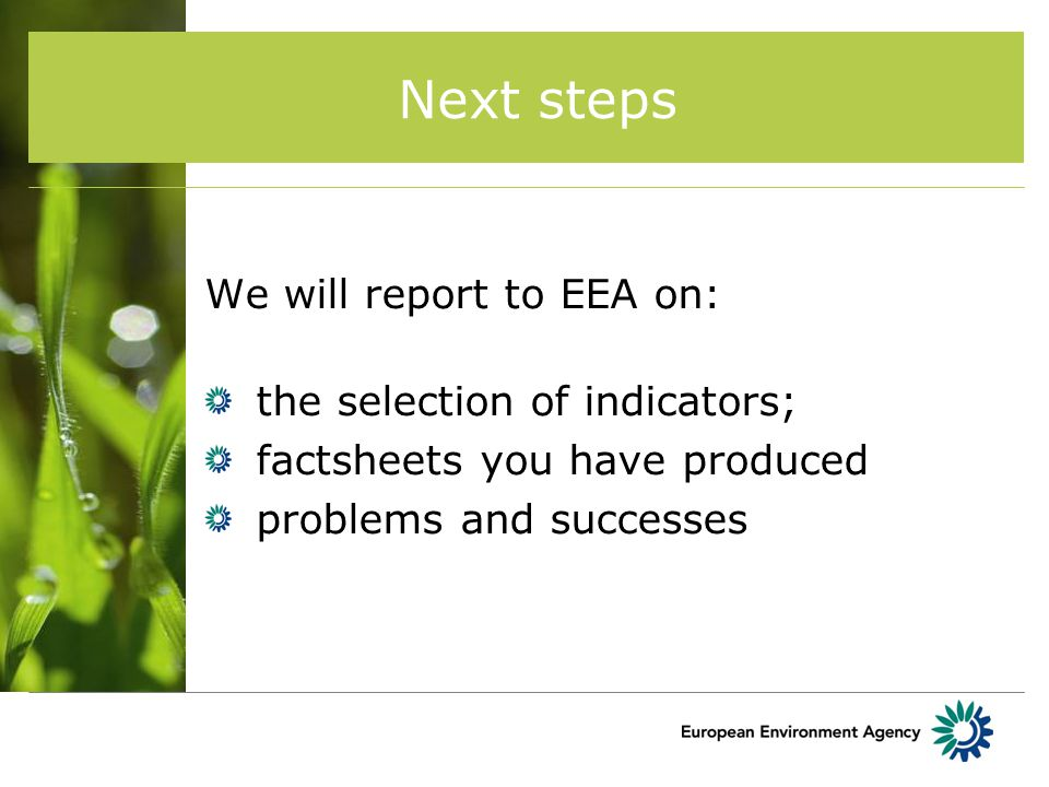 Next steps We will report to EEA on: the selection of indicators; factsheets you have produced problems and successes