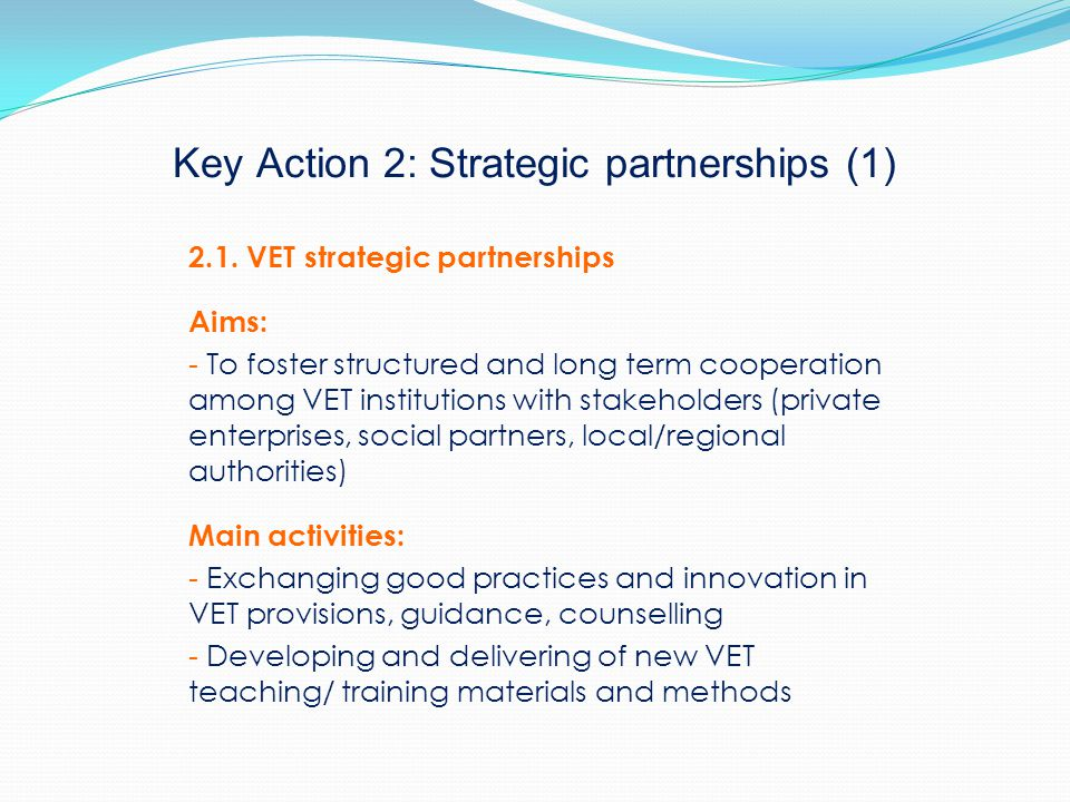Key Action 2: Strategic partnerships (1) 2.1.