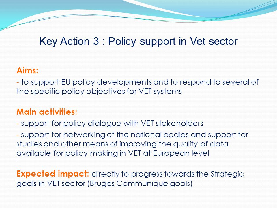 Key Action 3 : Policy support in Vet sector Aims: - to support EU policy developments and to respond to several of the specific policy objectives for VET systems Main activities: - support for policy dialogue with VET stakeholders - support for networking of the national bodies and support for studies and other means of improving the quality of data available for policy making in VET at European level - Expected impact: directly to progress towards the Strategic goals in VET sector (Bruges Communique goals)