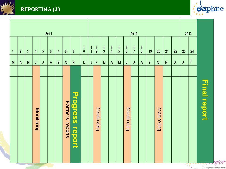 REPORTING (3) 201120122013 123456789 10101 1212 1313 1414 1515 1616 1717 1818192021222324 Final report MAMJJASONDJFMAMJJASONDJ F Monitoring Partners'