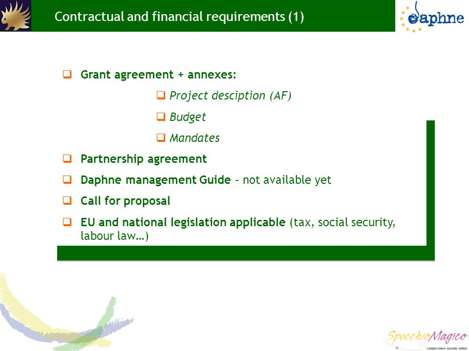 Contractual and financial requirements (1)  Grant agreement + annexes:  Project desciption (AF)  Budget  Mandates  Partnership agreement  Daphne management Guide – not available yet  Call for proposal  EU and national legislation applicable (tax, social security, labour law…)