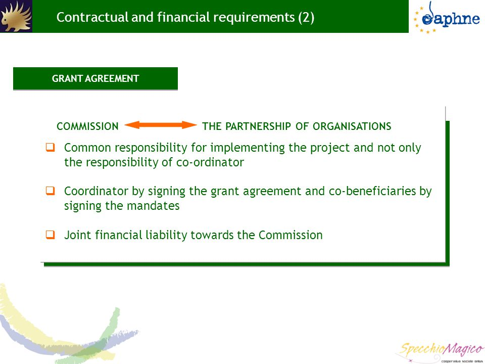 Contractual and financial requirements (2)  Common responsibility for implementing the project and not only the responsibility of co-ordinator  Coordinator by signing the grant agreement and co-beneficiaries by signing the mandates  Joint financial liability towards the Commission COMMISSION THE PARTNERSHIP OF ORGANISATIONS GRANT AGREEMENT