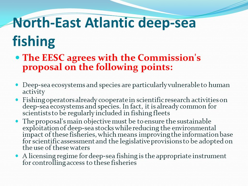 North-East Atlantic deep-sea fishing The EESC agrees with the Commission s proposal on the following points: Deep-sea ecosystems and species are particularly vulnerable to human activity Fishing operators already cooperate in scientific research activities on deep-sea ecosystems and species.