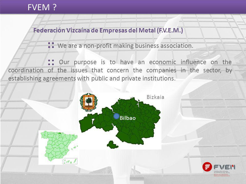 Federación Vizcaína de Empresas del Metal (F.V.E.M.) FVEM ? We are a non-profit making business association. Our purpose is to have an economic influe