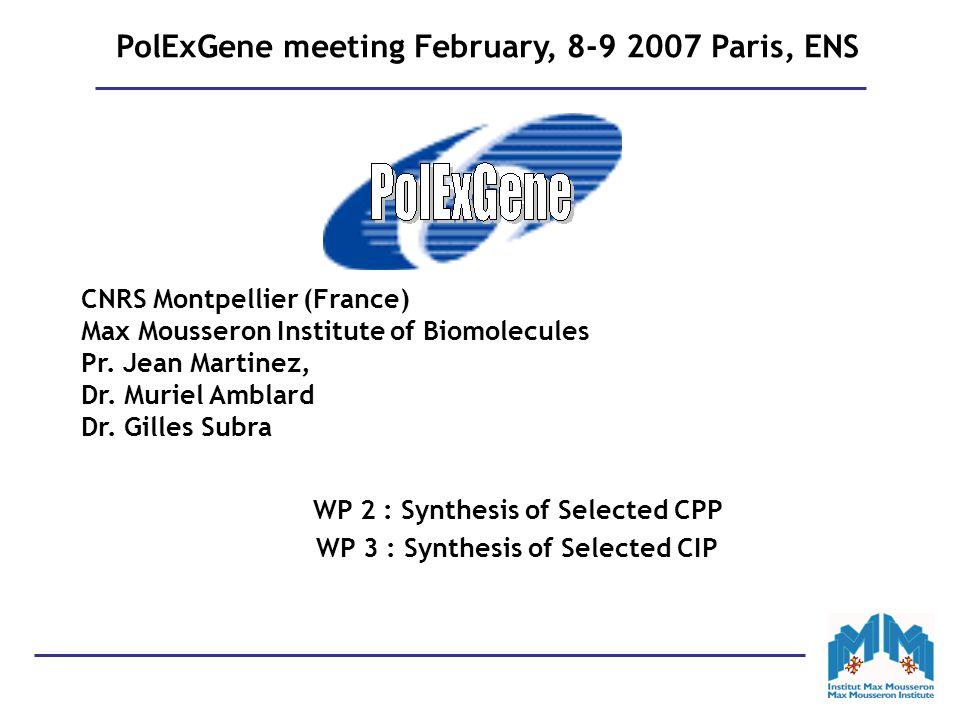 PolExGene meeting February, 8-9 2007 Paris, ENS CNRS Montpellier (France) Max Mousseron Institute of Biomolecules Pr.
