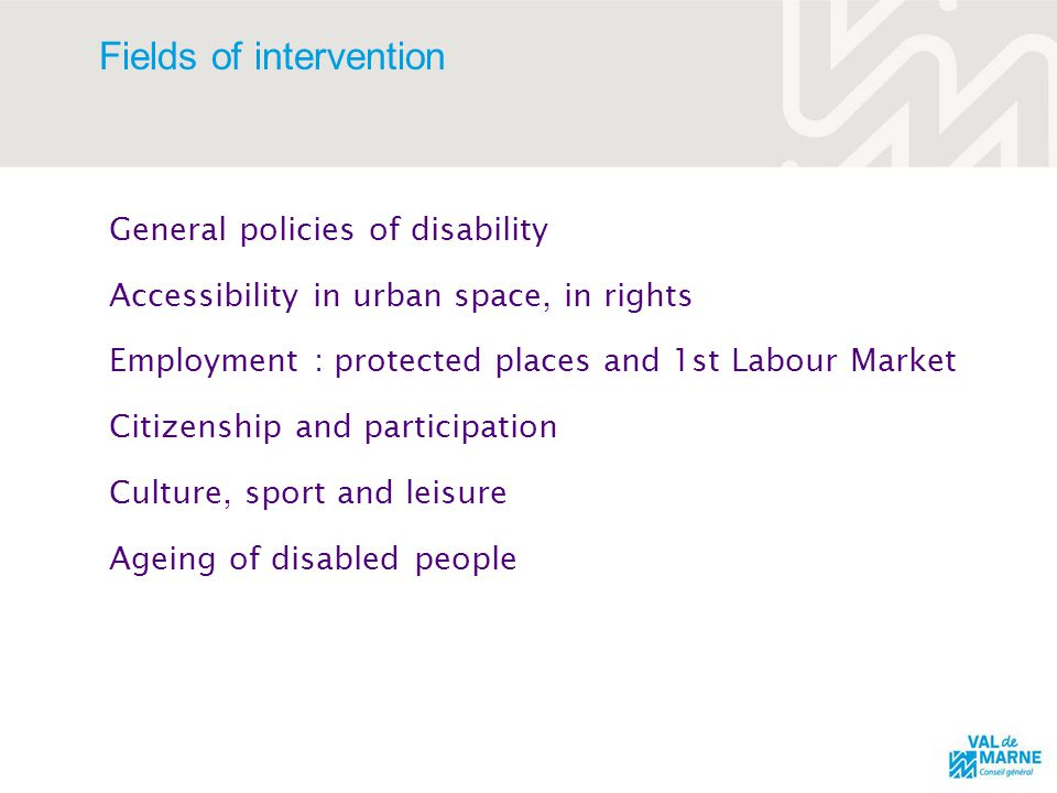 Fields of intervention General policies of disability Accessibility in urban space, in rights Employment : protected places and 1st Labour Market Citizenship and participation Culture, sport and leisure Ageing of disabled people
