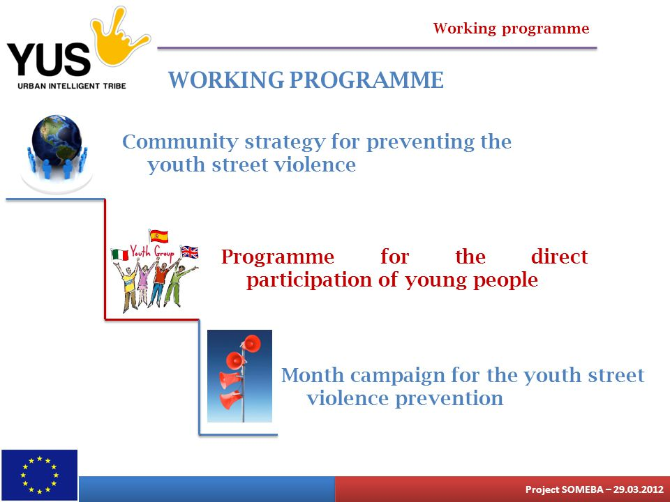 Working programme WORKING PROGRAMME Community strategy for preventing the youth street violence Programme for the direct participation of young people