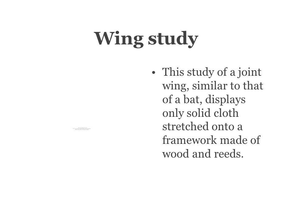 Wing study This study of a joint wing, similar to that of a bat, displays only solid cloth stretched onto a framework made of wood and reeds.