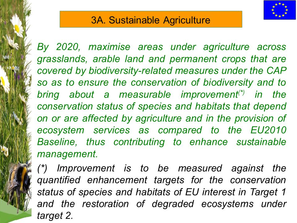 By 2020, maximise areas under agriculture across grasslands, arable land and permanent crops that are covered by biodiversity-related measures under the CAP so as to ensure the conservation of biodiversity and to bring about a measurable improvement (*) in the conservation status of species and habitats that depend on or are affected by agriculture and in the provision of ecosystem services as compared to the EU2010 Baseline, thus contributing to enhance sustainable management.