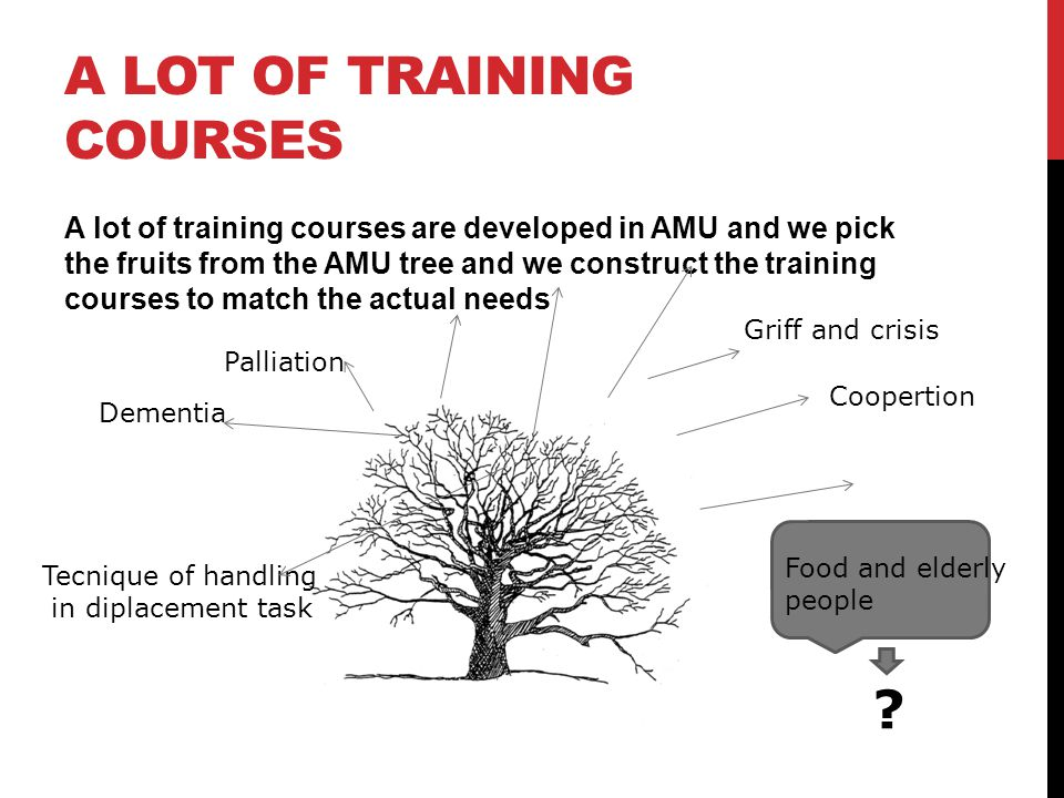 A lot of training courses are developed in AMU and we pick the fruits from the AMU tree and we construct the training courses to match the actual needs A LOT OF TRAINING COURSES Dementia Griff and crisis Coopertion Palliation Tecnique of handling in diplacement task Food and elderly people