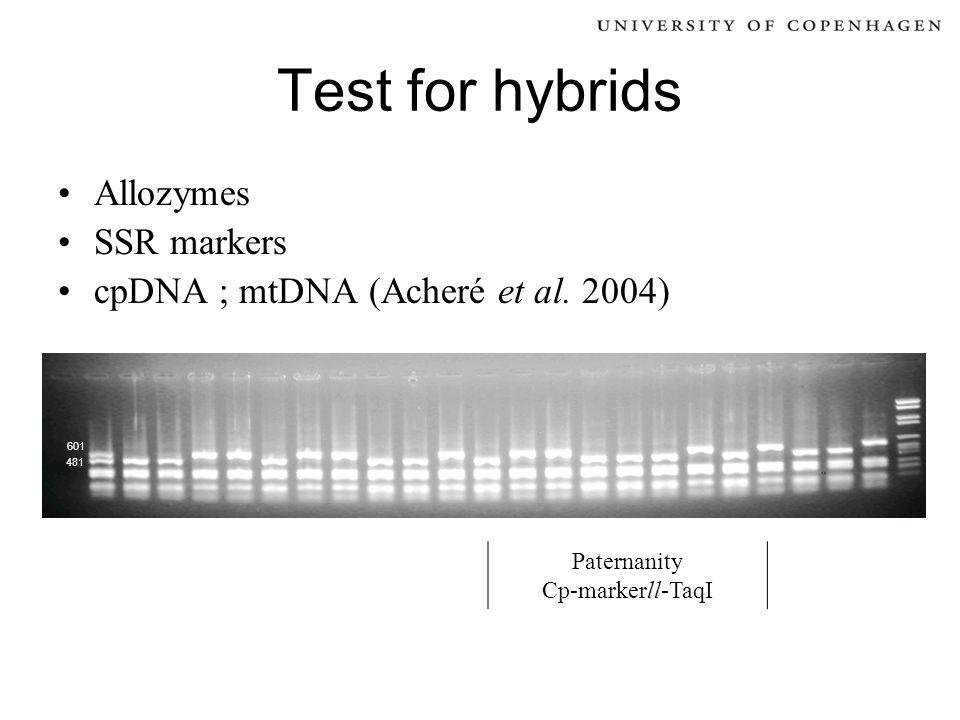 Test for hybrids Allozymes SSR markers cpDNA ; mtDNA (Acheré et al. 2004) Paternanity Cp-markerll-TaqI 481 601