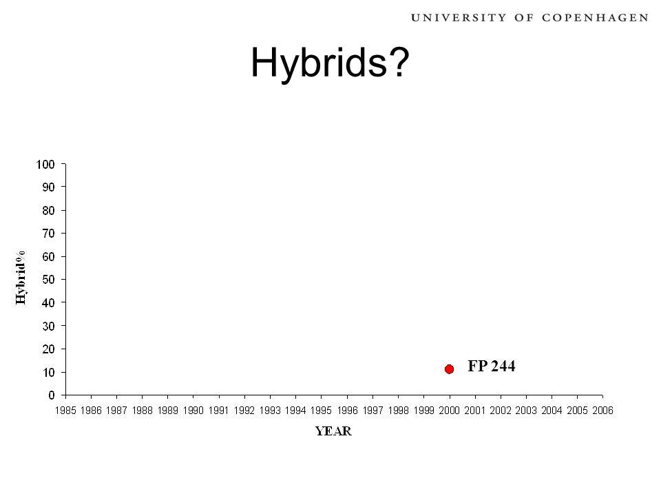 Hybrids? FP 244