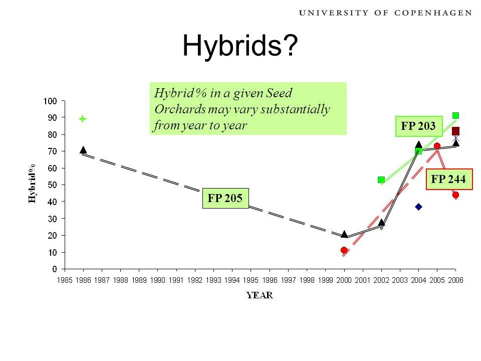 Hybrids.