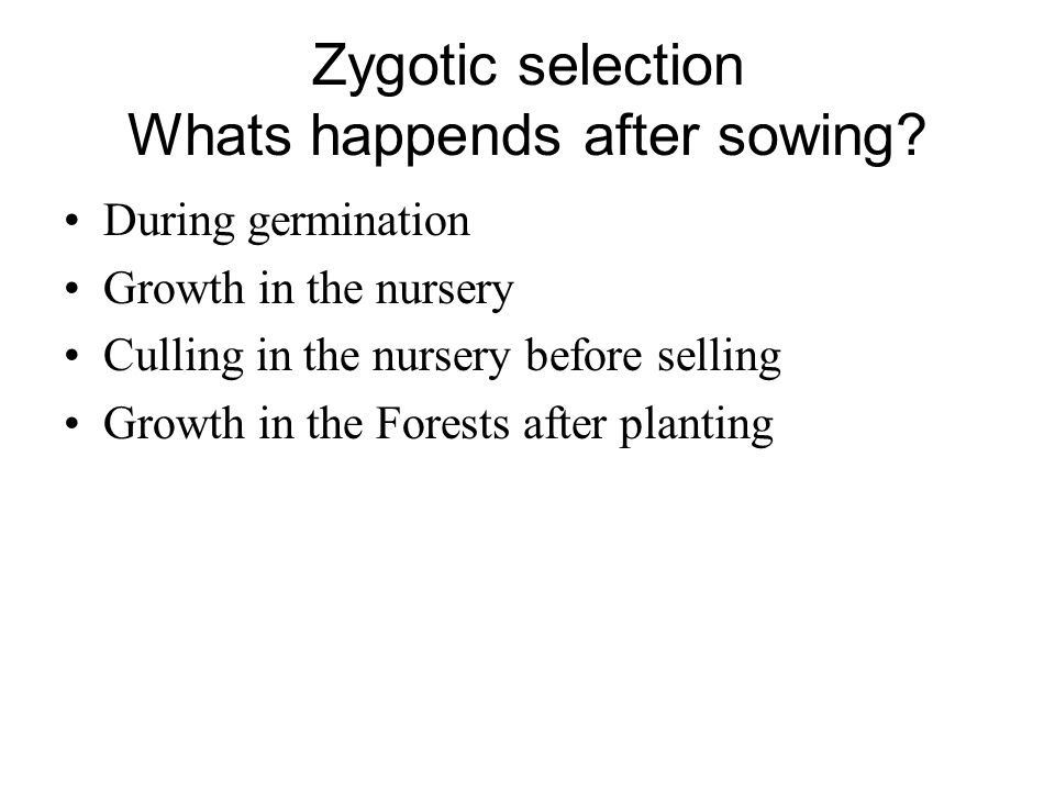 Zygotic selection Whats happends after sowing.