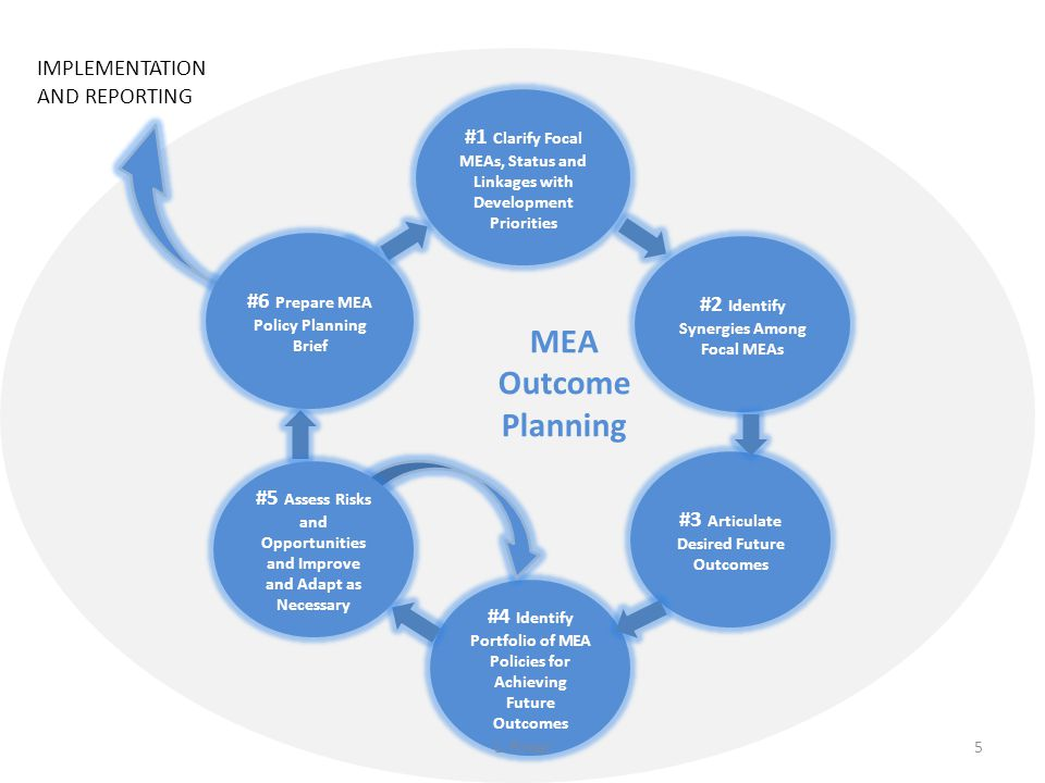 #1 Clarify Focal MEAs, Status and Linkages with Development Priorities #2 Identify Synergies Among Focal MEAs #3 Articulate Desired Future Outcomes #4