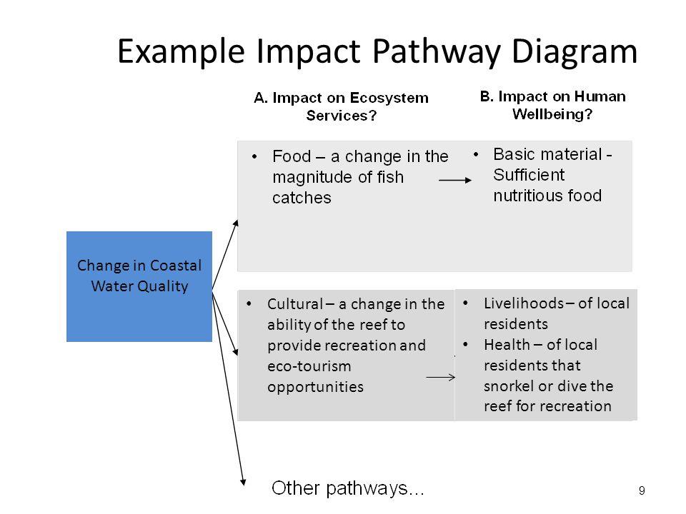 Further information: lpinter@iisd.ca http://www.unep.org/ieacp/files/pdf/mea/IEA_Training_Module_MEAs.pdf http://www.iisd.org/pdf/2011/iea_brochure.pdf