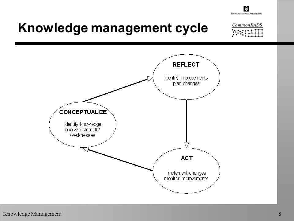 Knowledge Management8 Knowledge management cycle