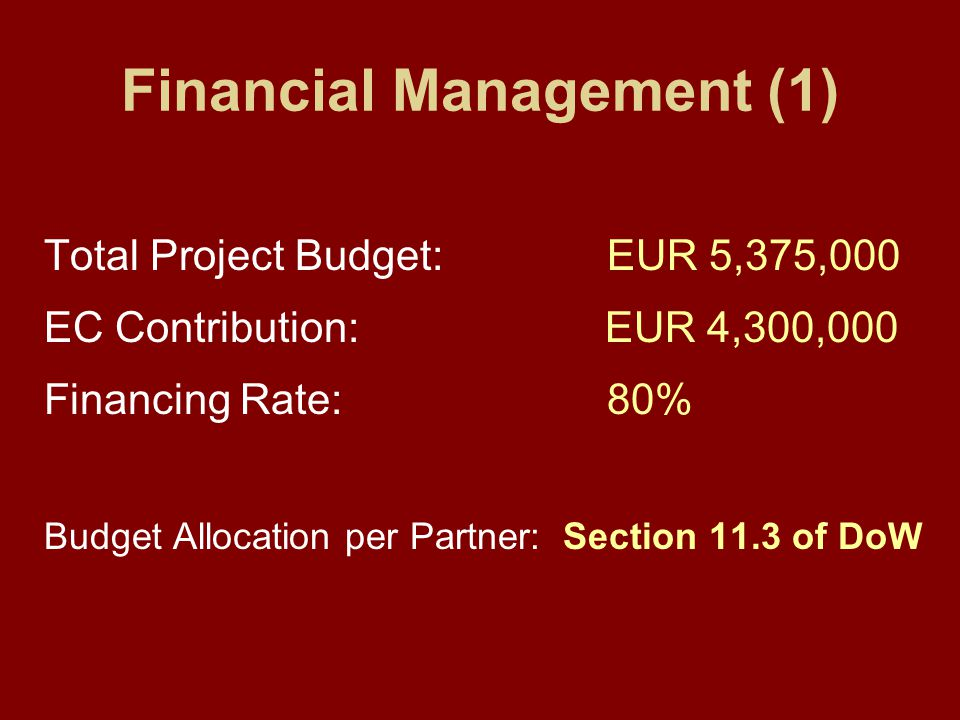 Financial Management (1) Total Project Budget: EUR 5,375,000 EC Contribution: EUR 4,300,000 Financing Rate: 80% Budget Allocation per Partner: Section