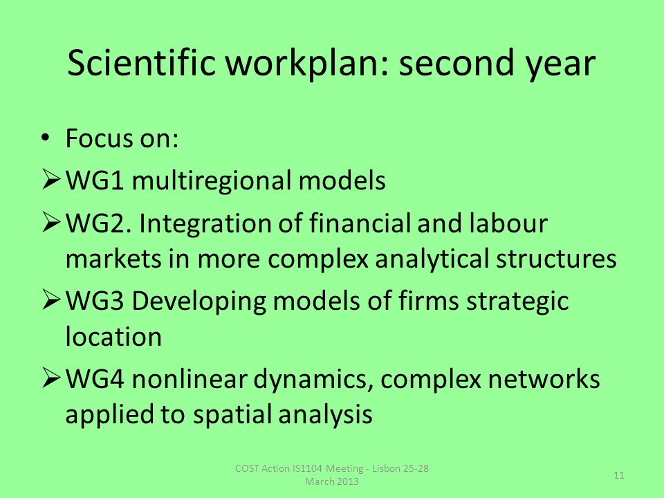 Scientific workplan: second year Focus on:  WG1 multiregional models  WG2. Integration of financial and labour markets in more complex analytical st