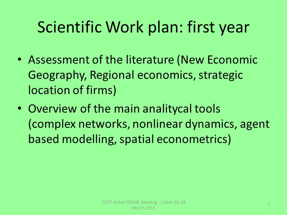 Scientific Work plan: first year Assessment of the literature (New Economic Geography, Regional economics, strategic location of firms) Overview of th
