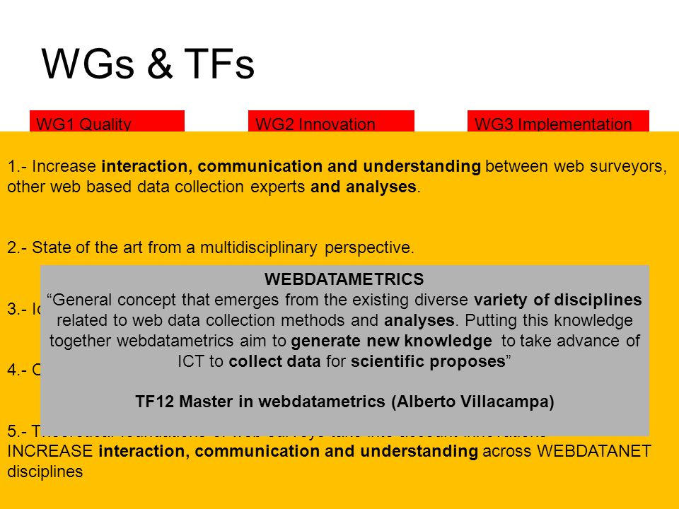 WGs & TFs WG1 QualityWG2 InnovationWG3 Implementation TF1 Measuring wages via web surveys (S. Steinmetz) TF2 Evaluating questionnaire quality (A. Slav
