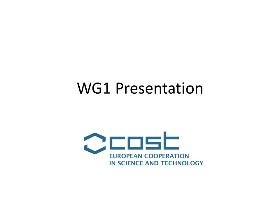 WG1 Presentation