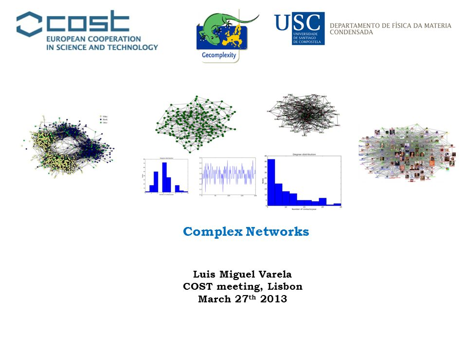 Complex Networks Luis Miguel Varela COST meeting, Lisbon March 27 th 2013