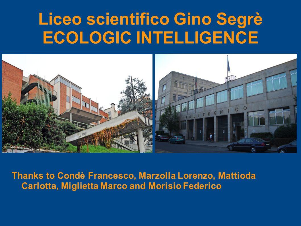 Liceo scientifico Gino Segrè ECOLOGIC INTELLIGENCE Thanks to Condè Francesco, Marzolla Lorenzo, Mattioda Carlotta, Miglietta Marco and Morisio Federico