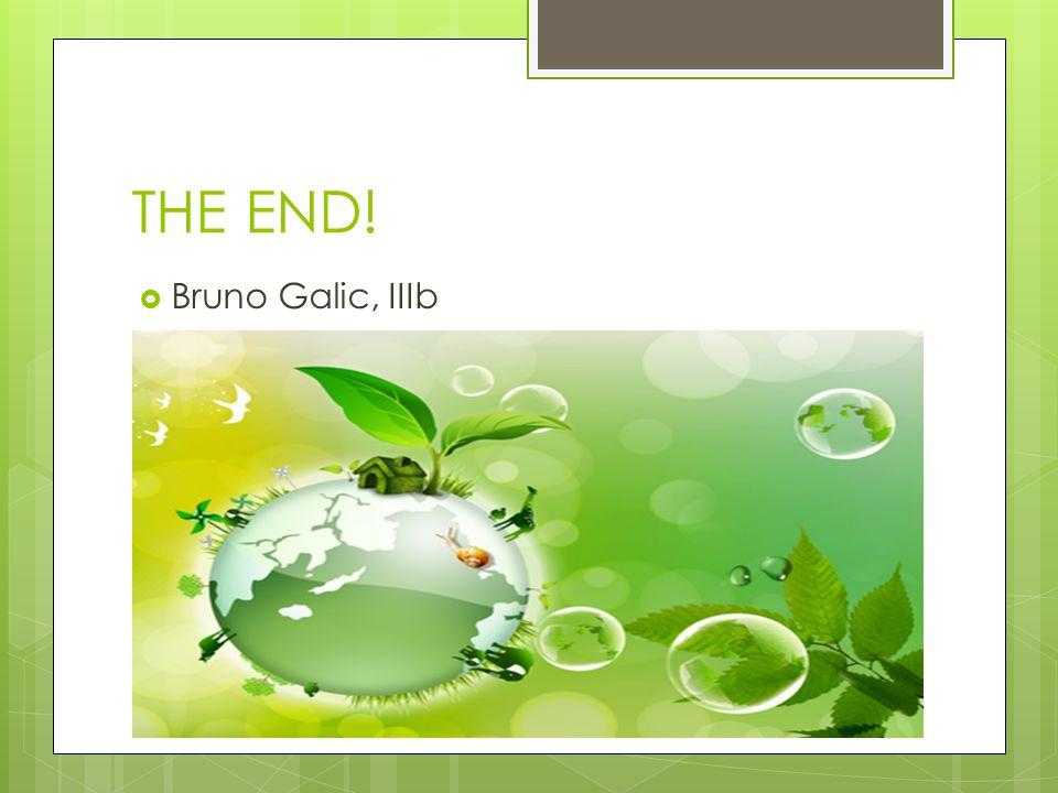 THE END!  Bruno Galic, IIIb